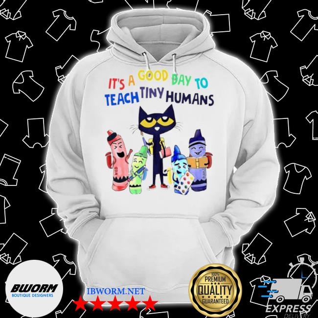 Teach its a good day to teach tiny humans Classic Hoodie