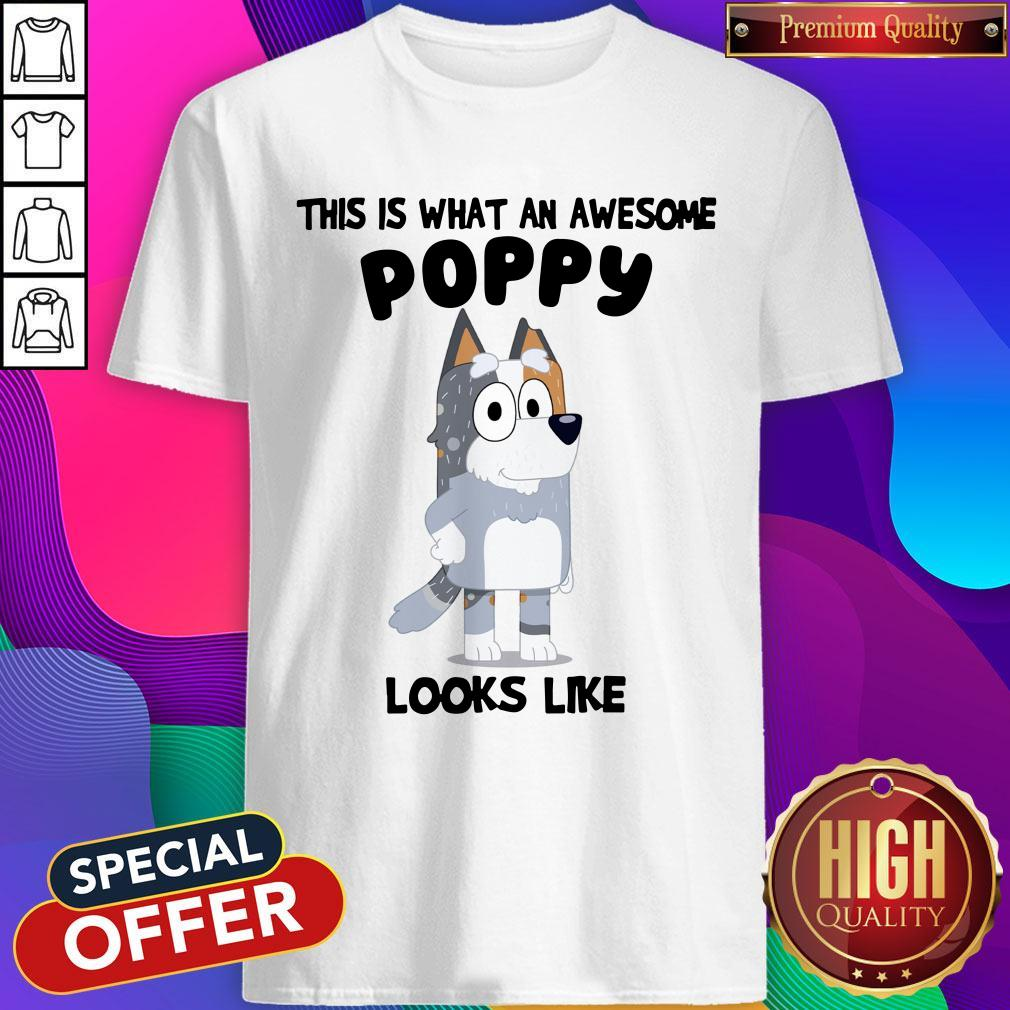 Bandit Heeler This Is What An Awesome Poppy Looks Like Shirt