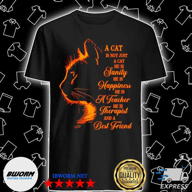 A cat is not just a cat he is janity he is happiness and a best friend shirt